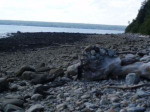Rock sculpture on Sears Island