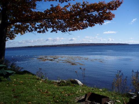 Towards Sears Island
