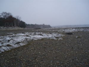 All you could hear were the waves, the gulls, a couple of loons and the seaweed cracking underfoot