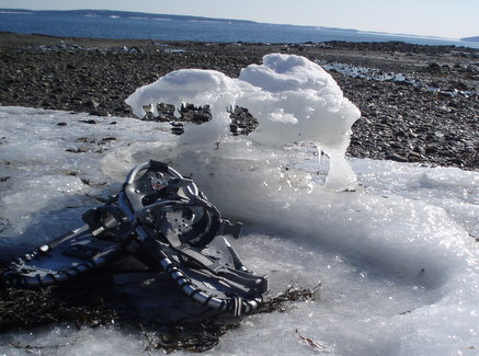 Snowshoes and ice sculpture...Maine life in February