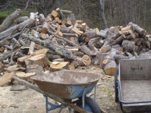 Mountains of wood waiting for the splitter...the fuel for the lobsterbakes later in the summer