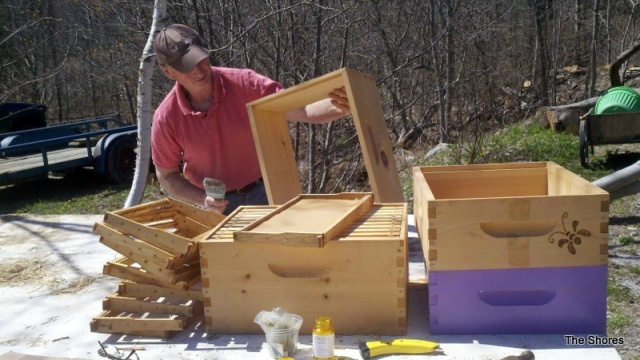 The bees are so happy Steve had to rush to prepare a new bee box before they overflowed the hive