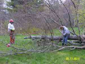 Glenn made short work of a dead tree in the group tenting area