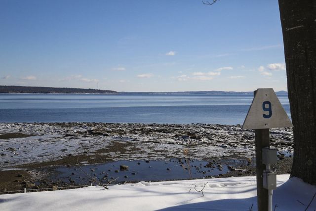 Looking towards Sears Island and Castine