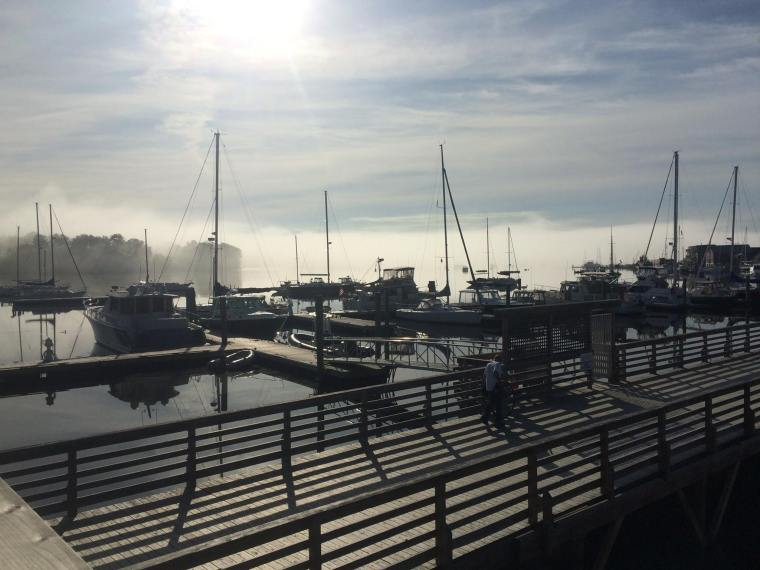 Harbor Walk Morning