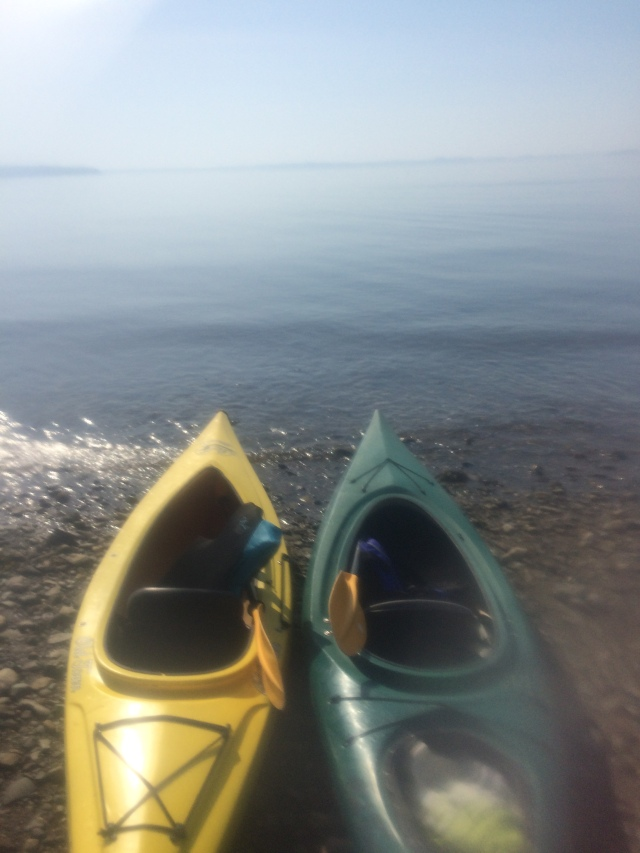 Kayak, Maine, camping, fun, ocean, green, yellow, sea