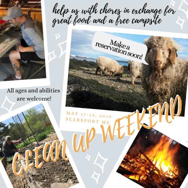 Free Camping Weekend…OMG year 28! – Maine  Ocean  Camping