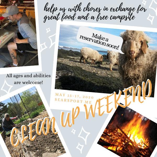 Clean Up Weekend Graphic May 15-17, 2020